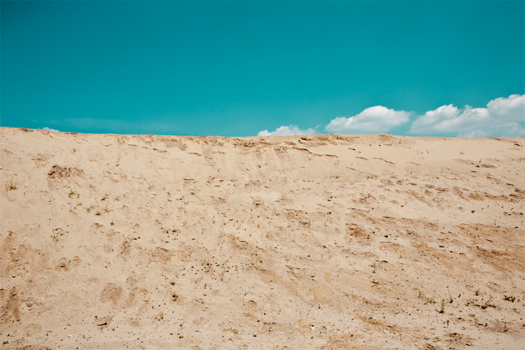 lexpop_alexander_trattler_hh_beach