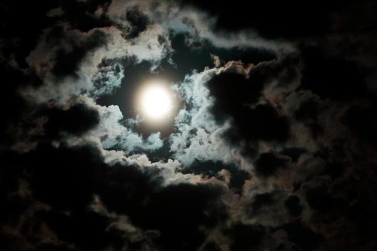 lexpop_alexander_trattler_moon_1
