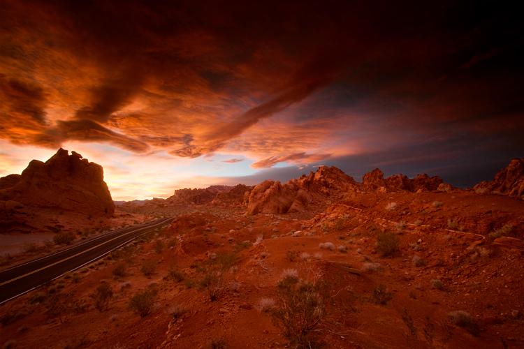 lexpop_alexander_trattler_desert